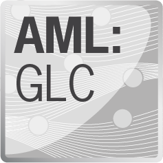 AML:GLC – gPROMS rate-based Advanced Model Library for Gas-Liquid Contactors